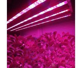 Led Groeilamp voor Planten