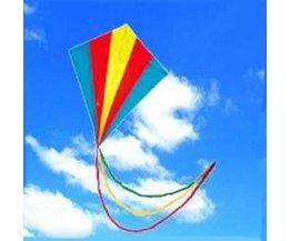 Meerkleurige Vlieger Met Staart