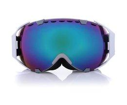 Ski en Snowboard Goggles