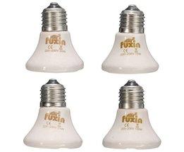E27 Croître Types De Lampes Multiples
