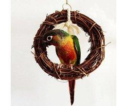 Garland Pour Les Oiseaux