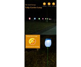 Forme LED Lampes De Jardin Tulip