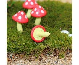 Les Champignons Miniatures Comme Décoration Dans Le Jardin