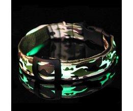 Collier De Chien Avec LED Light