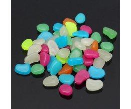 Pebbles Lumineux (50 Pièces)