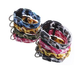 Chien Lumineux Collier (Taille L)