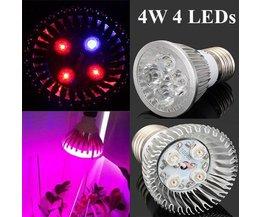 E27 Ampoule LED 4W Plantes