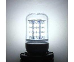 G9 Lamp For LED Lighting