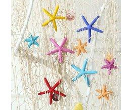 Colored Starfish Mini 5.5 CM