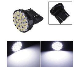 T25 Lampe