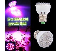 LED Grow Light / Lampe De Croissance 2W E27