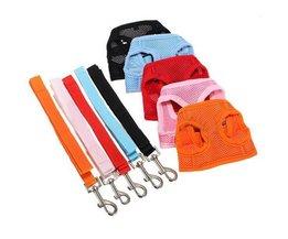 Dog Harnesses Avec Ceinture XL