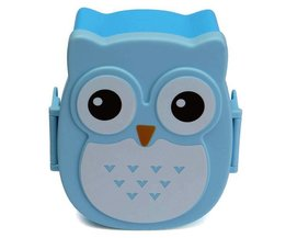 Lunch Box Dans Owl Forme