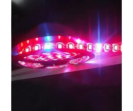 LED Strip Lampe Usine