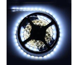 Bande De LED Blanche 5 Meter