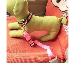 Transport Dog In Ceinture De Sécurité Voiture