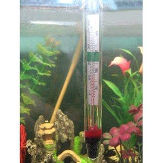 Aquarium Température