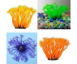 Art Coral Aquarium