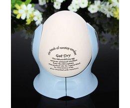 Dehumidifier Egg Conception