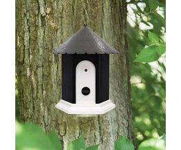 Anti Bark Birdhouse Pour Chien