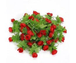 Art Roses Ivy
