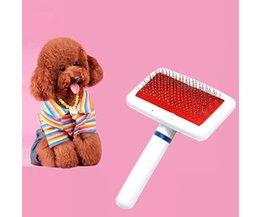 Animaux Brush