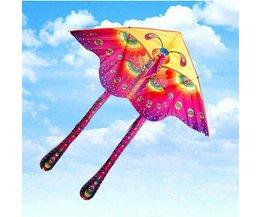 Kite Avec Le Papillon Conception