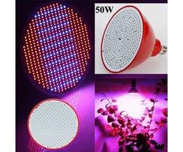 LED Grow Light Avec 50W Force