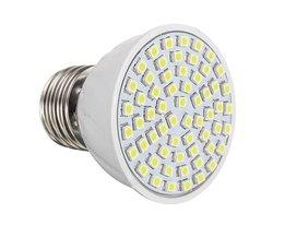 SMD 3528 LED Avec Culot E27