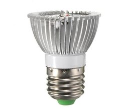 Wachsen Lampe E27, E14 Oder GU10 Kaufen