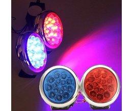 LED-Warnlicht Auto Oder Motorrad