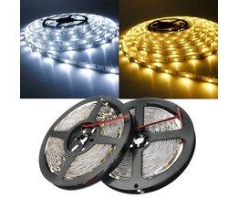 LED-String-Licht 5M