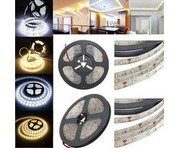 5M LED-Streifen In Zwei Farben