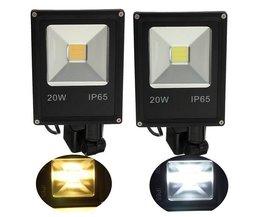 20 Watt Lampe