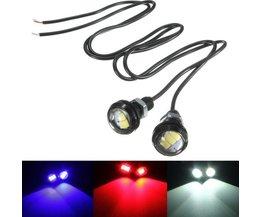 10 Watt LEDs