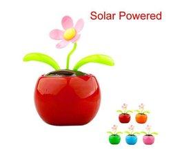 Sunflower Solar Für KFZ
