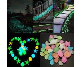 Glow In The Dark Stones 50Pcs