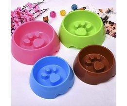 Geben Sie Plastikbehälter Für Hunde Und Katzen