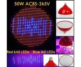Wachsen Licht 50W E27 LED