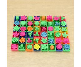 Mini-Kaktus Für Kinder 48 Stück