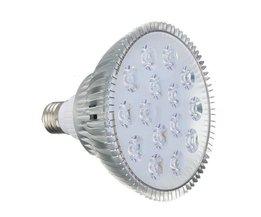 Wachsen LED Light Purple Licht Displays