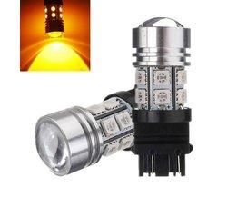 3157 Lampe Für Auto