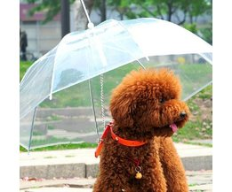 Hund Regenschirm