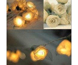 Roses Licht Garland
