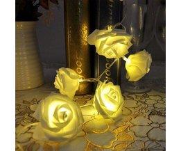 Ambient-Beleuchtung Mit 10 Rosen