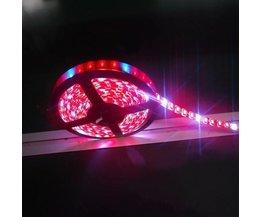 Wachsen Lampe LED-Streifen
