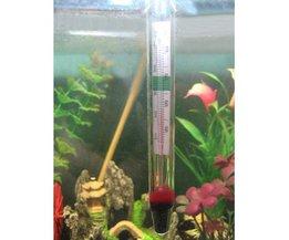 Aquarium Temperatur
