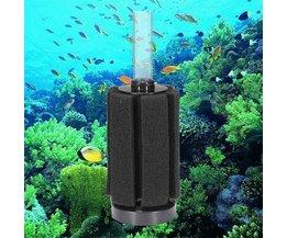 Schwammfilter Für Aquarium