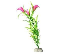 Dekoration Aquarienpflanzen
