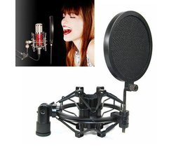 Professionelles Mikrofon Popfilter